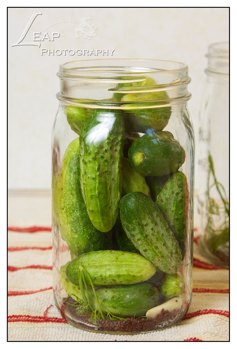 Dill Pickles: Home Canning | Boise Food Photographer ...  |Canning Dill Pickles
