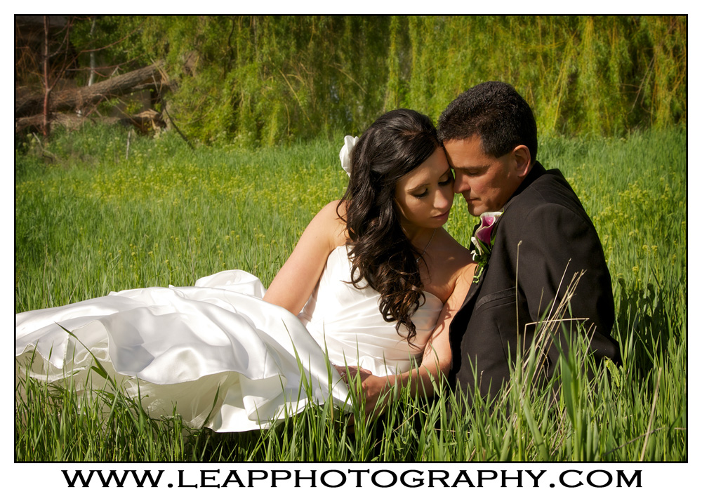 bride and groom sitting in a field of grass