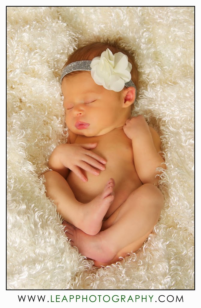 newborn lying in a fuzzy blanket