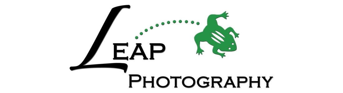 BLOG | Leap Photography