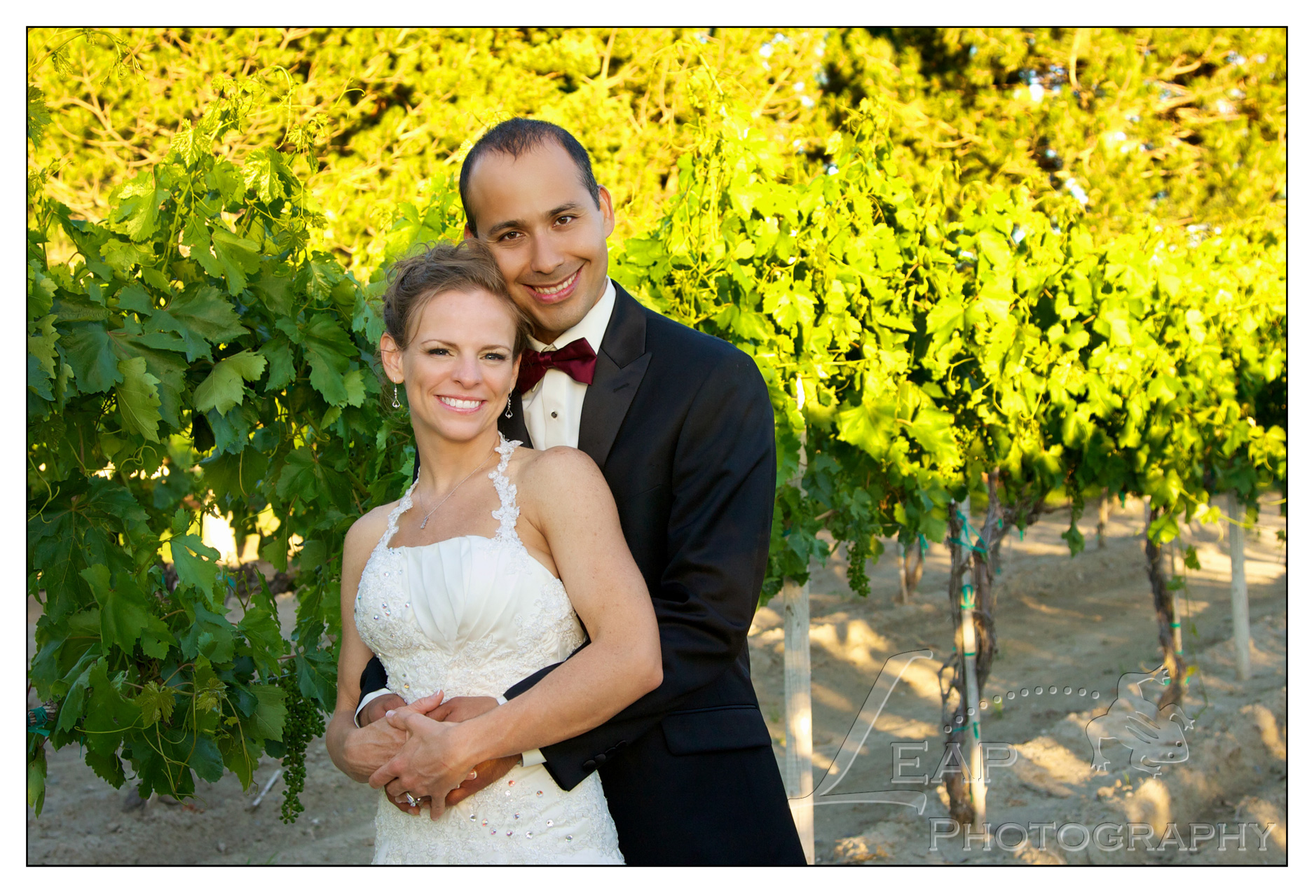 newly married couple in the vineyard
