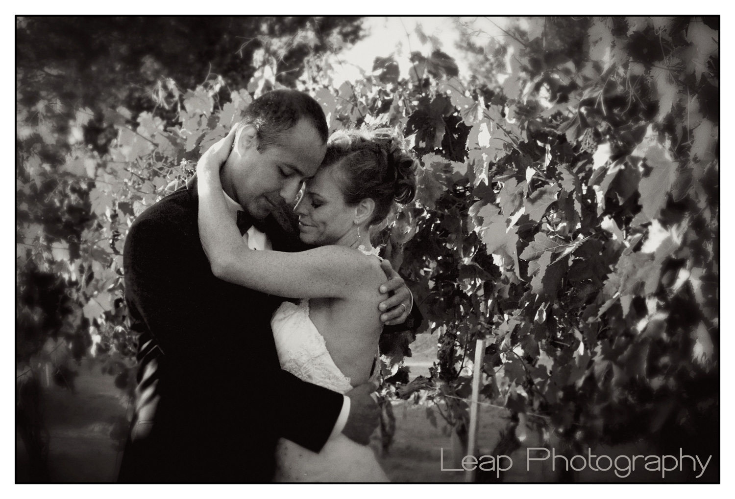 Couple embracing each other in vineyard