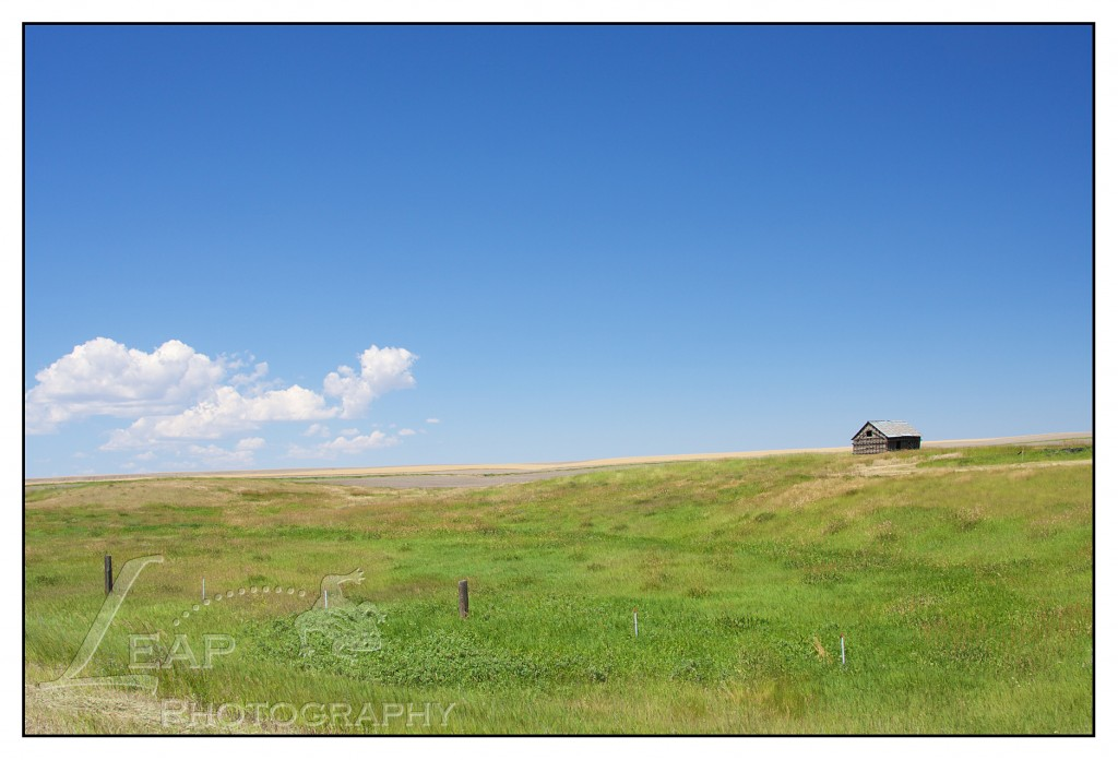 old homestead in Central Montana